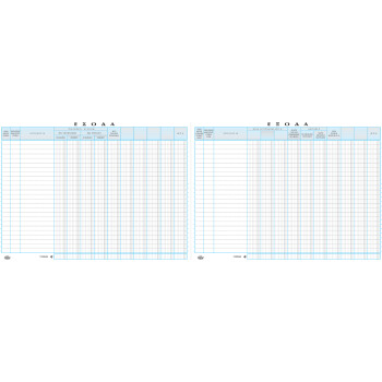 Βιβλίο Εσόδων - Εξόδων Αριθμημένο 100 φύλλων διαστάσεων 25x32cm με κωδικό 127 από την ΤΥΠΟΤΡΑΣΤ.